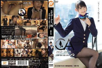 BF-240 Sho Nishino Et Al Intercourse 猥 Feel Stewardess, By Instinct Sho