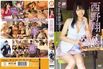 BF-290 Sho Nishino 390 Minutes SPECIAL