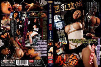 CMN-141 Big Thief Odor Rape Question Kobayakawa Reiko