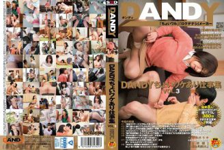 DANDY-486 DANDY Choi Different Reasons Work Collection VOL.3