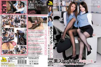 ELO-375 Sayaka Yuki Yu Mai Mon OL Pies Black Stockings