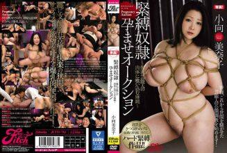 JUFD-761 Bondage Slave Pregnancy Auction ~ Bread Marrow Cheering In The Bodies Of Female Body – Minako Oguko