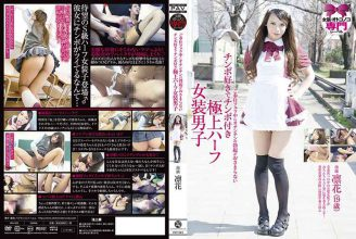 PAV-023 A Favorite Cock Cock With A Superb Half-Dressing Boys Not Erection Of The Penis During Your Service Blow Is Fit Rinhana