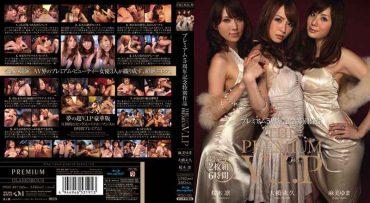 PGD-481 THE PREMIUM VIP Premium Work 5 Anniversary Special (Blu-ray Disc)