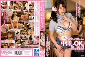 PPPD-580 Her Elder Sister Entrusts Me With Big Tits And Creampie OK Castle Osaka Haruna