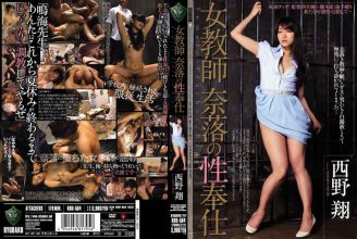 RBD-564 Sex Service Nishino Xiang Teacher Abyss